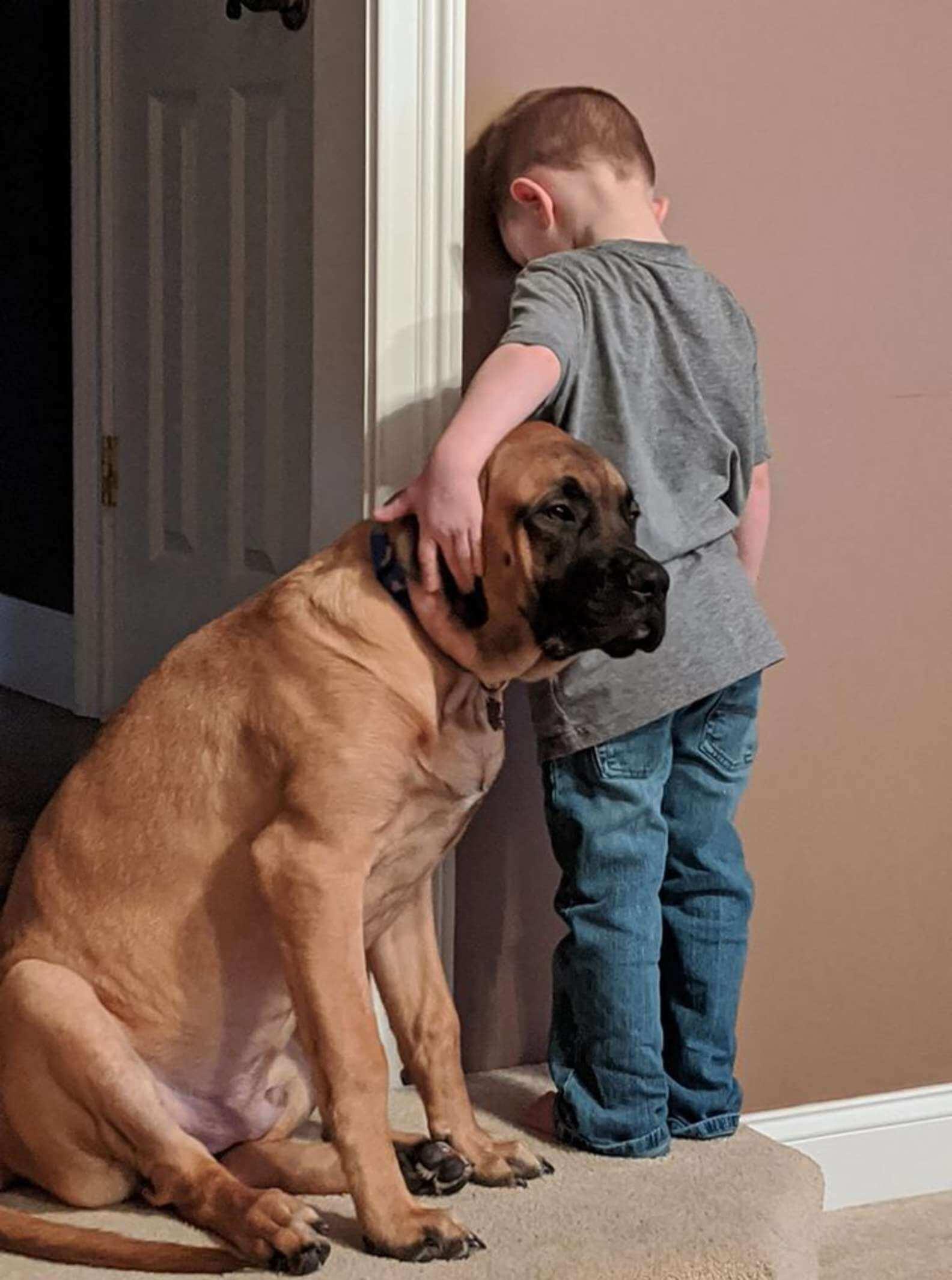 Mãe coloca filho de castigo, cachorro lhe faz companhia e foto se torna VIRAL
