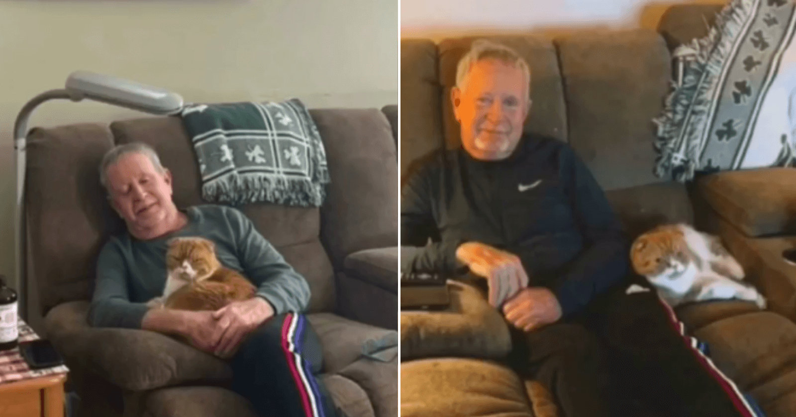 Diagnosticado com câncer, homem 'ganha' gata que não se separa dele