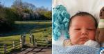Husky siberiano encontra recém-nascido abandonado em parque