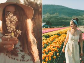53 Frases sobre a Primavera: celebre a chegada das flores!