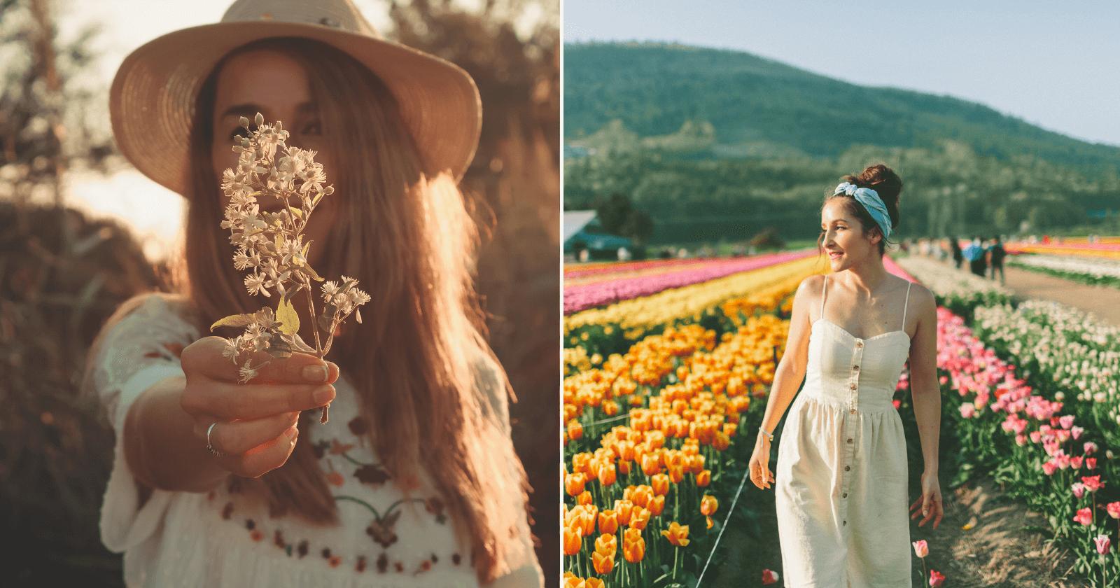 65 frases de PRIMAVERA: celebre a chegada das flores!