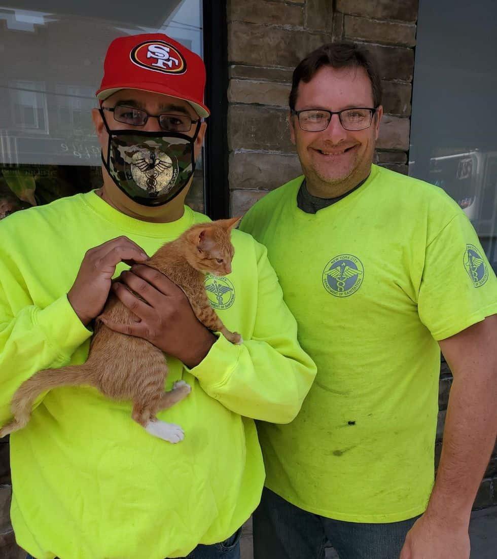 Funcionários salvam gatinho que tinha sido jogado fora em sacola lacrada
