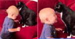 Mãe procura o filho em silêncio e o encontra em banho com gato