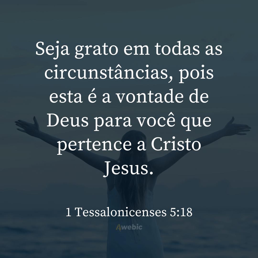 Versículos -Agradecimento-Deus