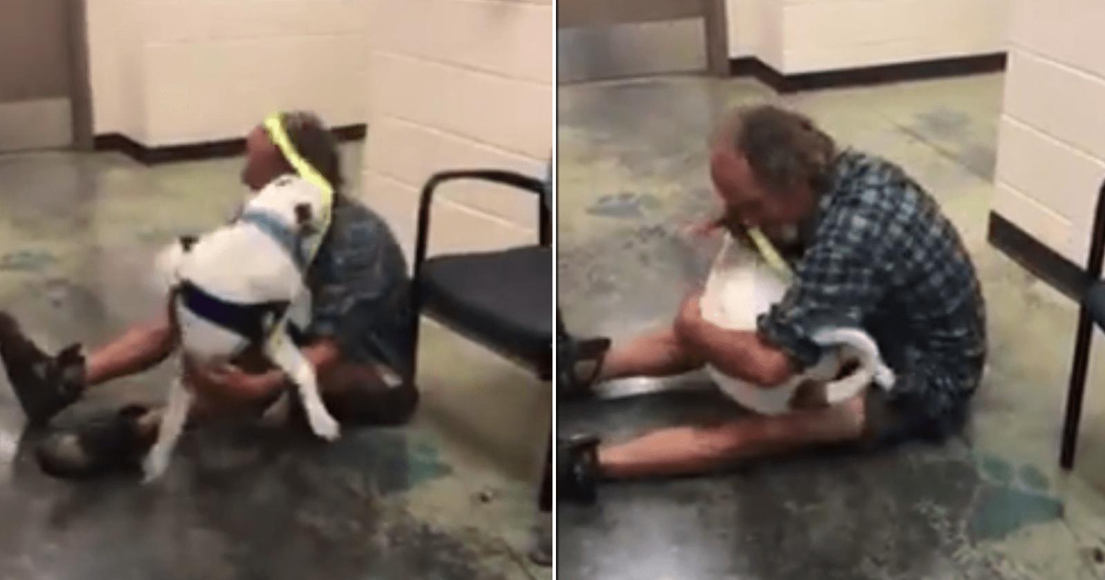 Homem em situação de rua acha seu cachorro perdido e reação é emocionante
