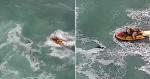 Equipe de resgate salva cachorro que se afogava no mar