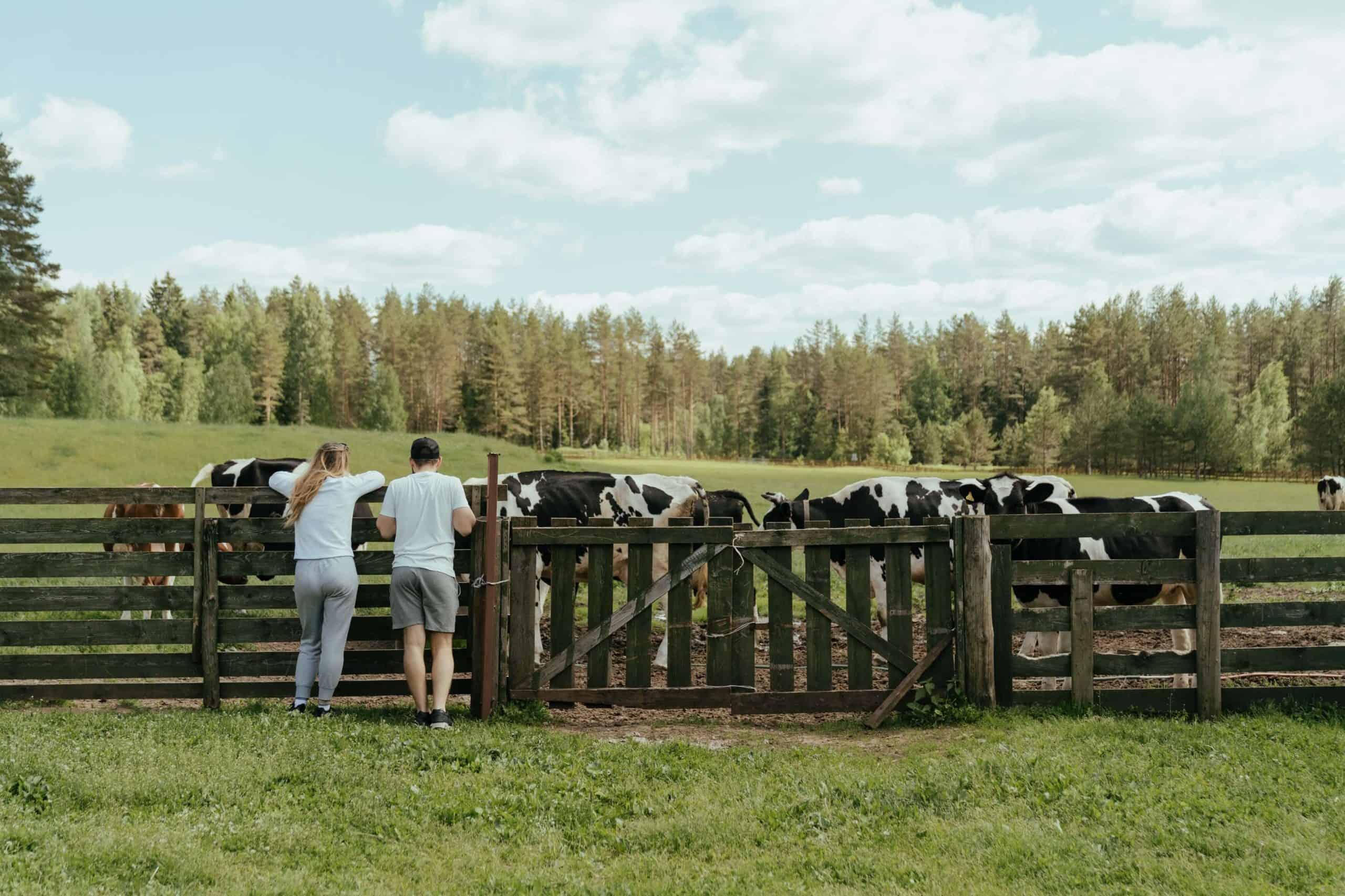 legendas-para-fotos-na-fazenda