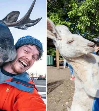 Fotógrafo fica conhecido por ser amigo de todos animais