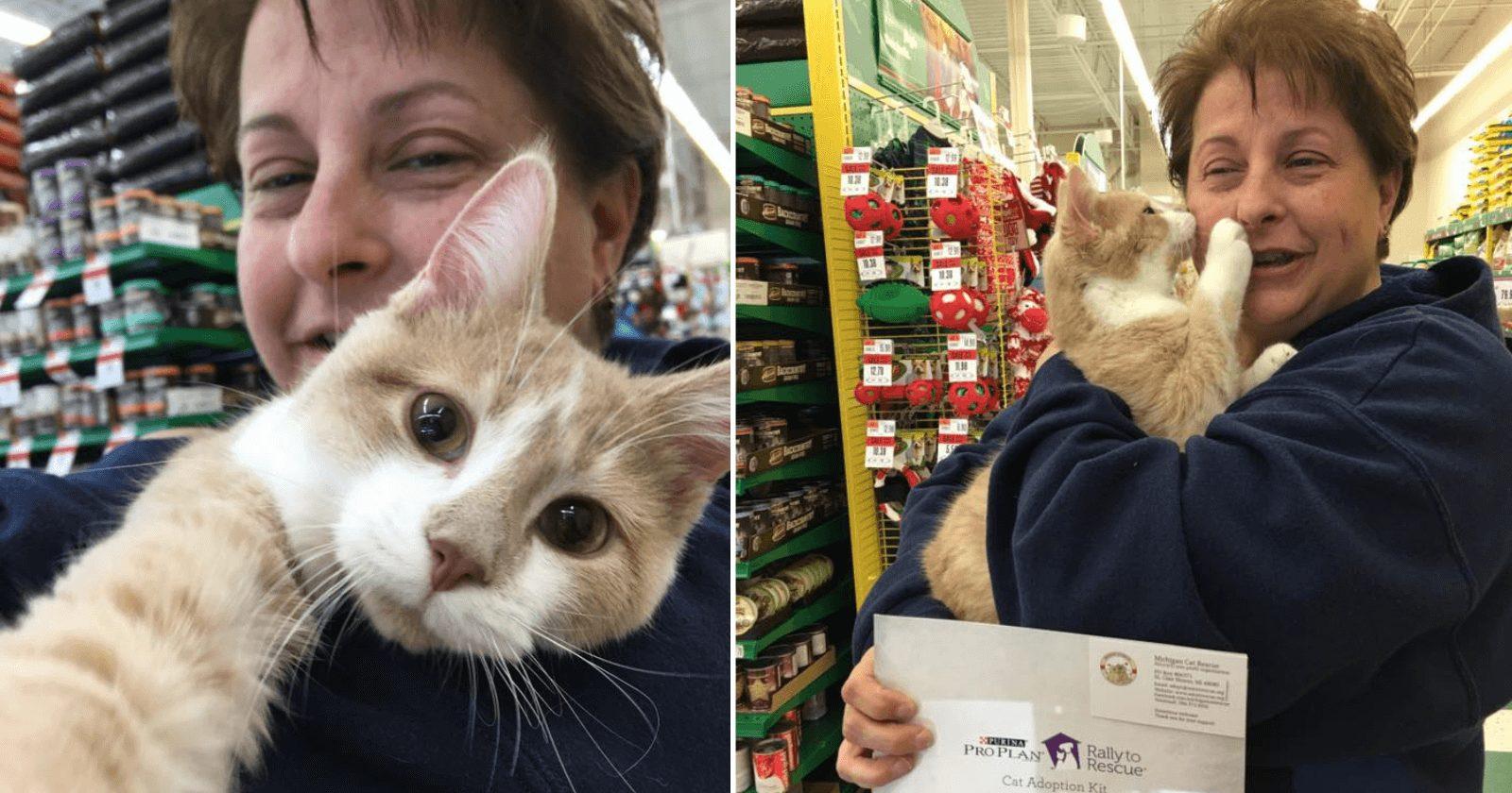 Gato abraça e beija mulher por estar feliz em ser adotado