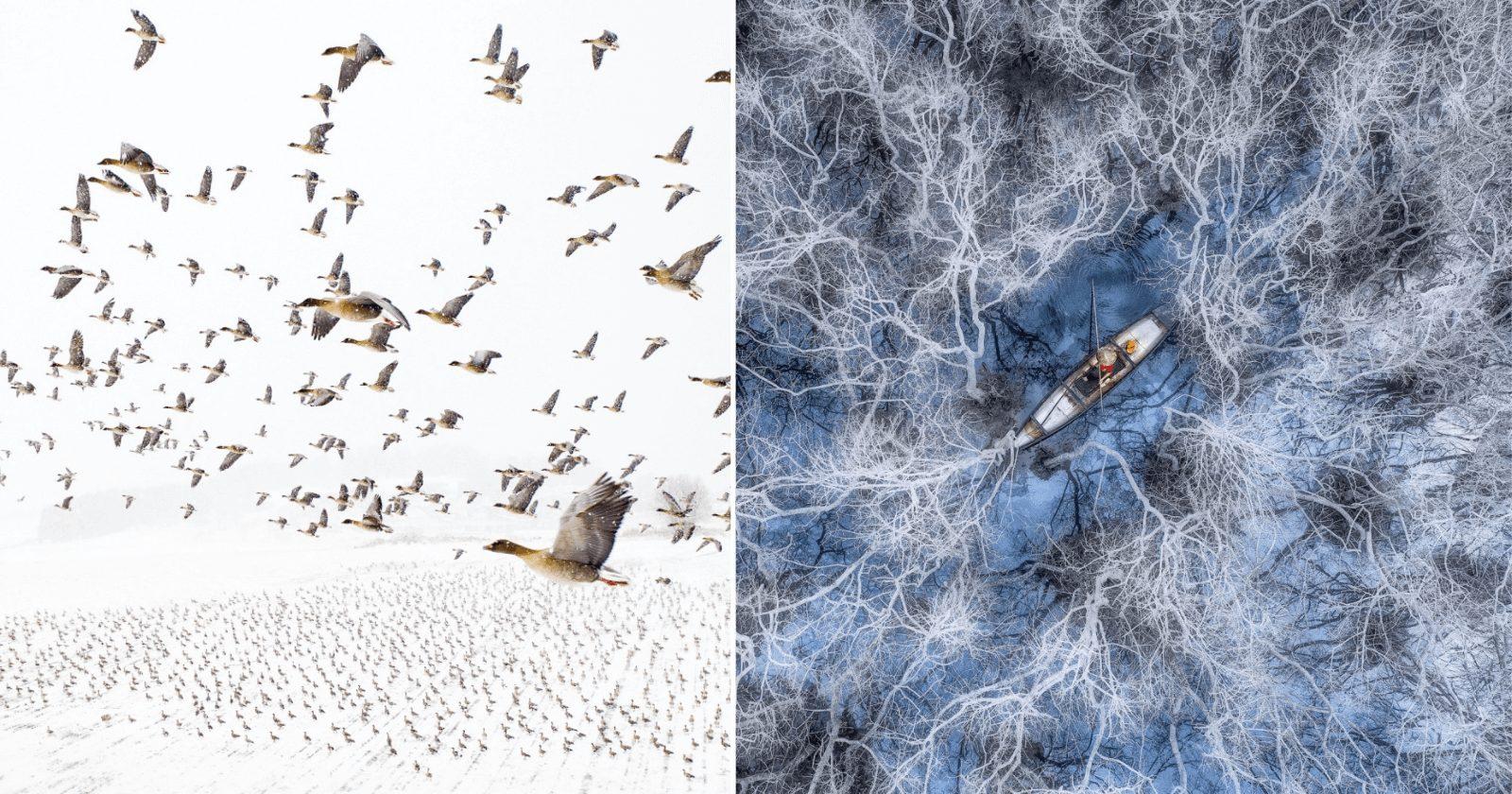 Concurso fotográfico de drones traz emoção com vencedores