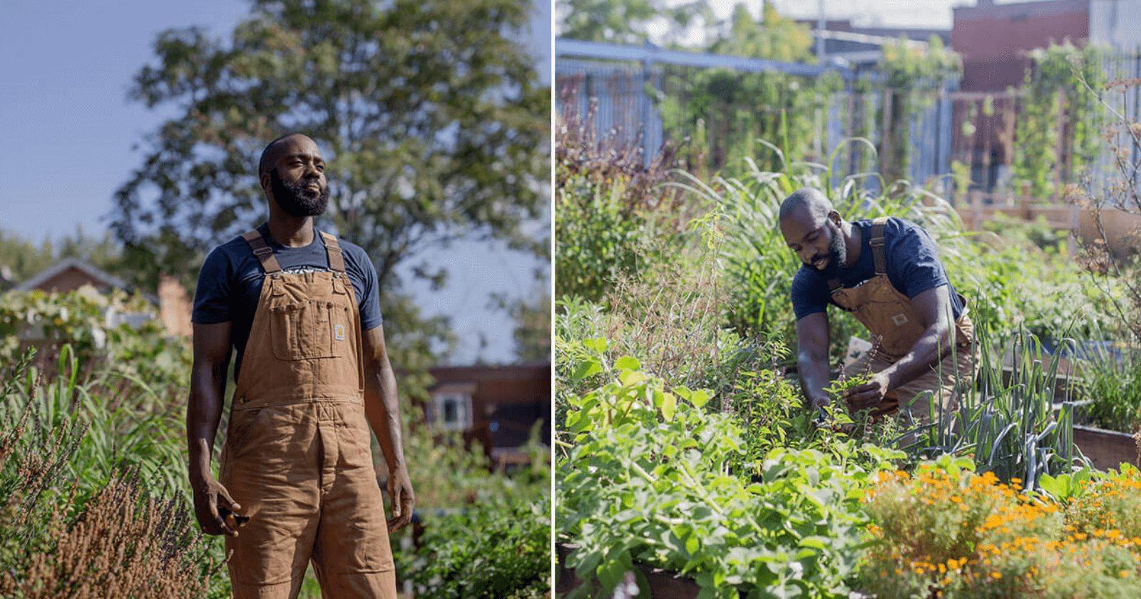 Homem transforma terreno vazio em horta comunitária incrível